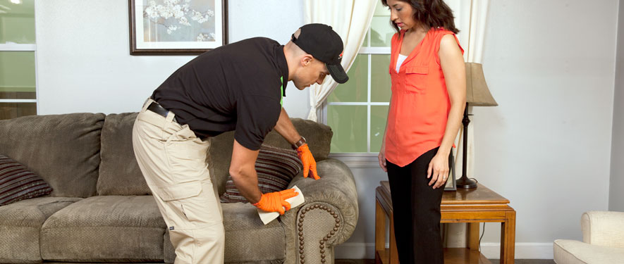 Lakeland, FL carpet upholstery cleaning