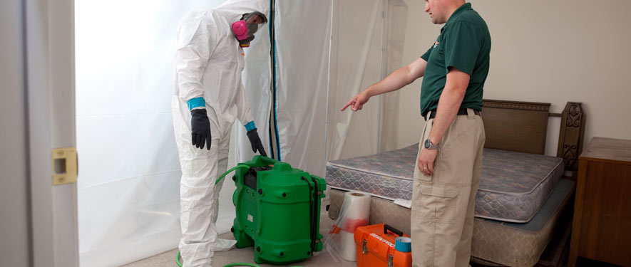 Lakeland, FL mold removal process